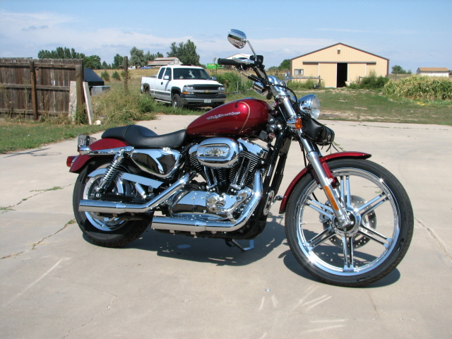 04 Harley Davidson 1200 Custom Motorcycles For Sale